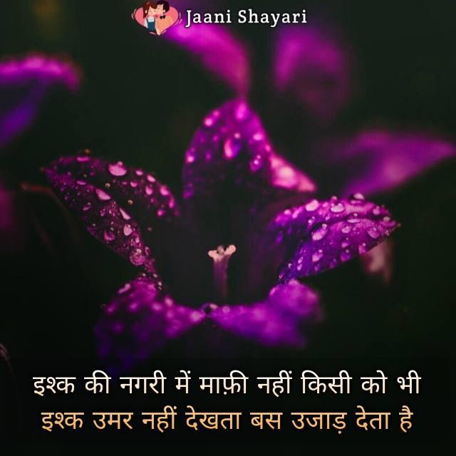 I am sorry shayari